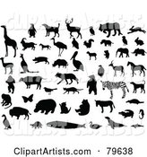 Digital Collage of Silhouetted and Black and White Animals
