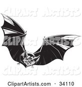 Evil Vampire Bat in Flight, Flapping Its Wings and Flying Forward