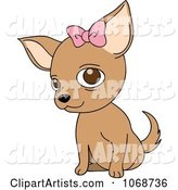 Female Chihuahua with a Bow