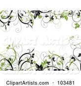 Green and Black Leafy Vines Framing a White Background