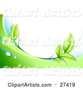 Green Leaves, Dew and Green and White Waves Bordering a White Background
