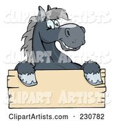 Happy Gray Horse Looking over a Blank Wood Sign