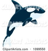 Happy Orca Killer Whale