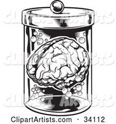 Human Brain and Bubbles Floating in a Specimen Jar in a Research Laboratory