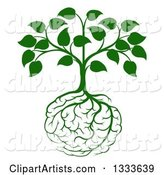 Leafy Green Heart Shaped Tree with Brain Roots