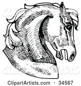 Muscular Horse's Head in Profile, Facing Right