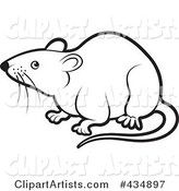 Outlined Rat