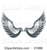 Pair of Gray Bird or Angel Wings, Symbolizing Faith or Freedom, on a White Background