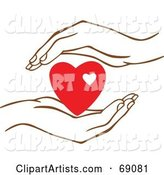 Pair of Human Hands Protecting a Red Heart