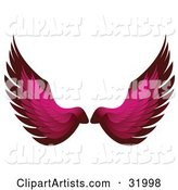 Pair of Pink Bird or Angel Wings, Symbolizing Faith or Freedom, on a White Background