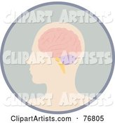 Profiled Human Head and Brain in a Circle