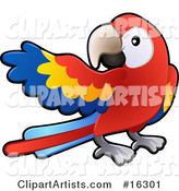 Red, Yellow and Blue Scarlet Macaw Parrot Bird (Ara Macao) with a White Circle Around Its Eye