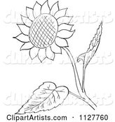 Retro Vintage Black and White Sunflower and Leaves Line Drawing