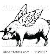 Retro Vintage Black and White Winged Pig