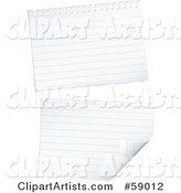 Ripped Piece of Lined Notebook Paper