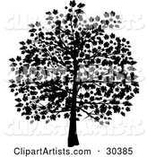 Silhouetted Tree in Black, with Leaves Covering the Branches