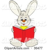 Smart Little Bunny Rabbit Sitting and Reading a Red Book