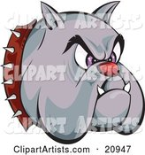 Tough Bulldogs Head with a Red Nose, Purple Eyes, Fangs and a Spiked Collar, over a White Background