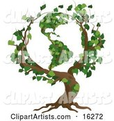 Tree with Branches Growing in the Shape of the Earth with the America's Featured