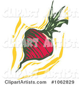 Woodcut Styled Turnip or Radish