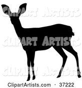 Vector Deer Clipart by Dero