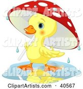 Vector Duck Clipart by Pushkin