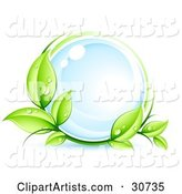 Vector Ecology Clipart by Beboy