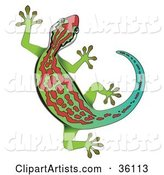 Vector Gecko Clipart by Frog974