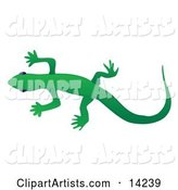 Vector Gecko Clipart by Rasmussen Images