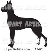 Vector Great Dane Clipart by Prawny
