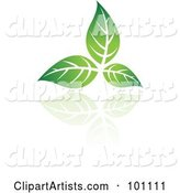 Vector Green Leaf Clipart by Cidepix