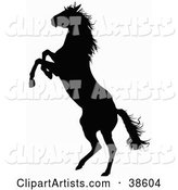 Vector Horse Clipart by Dero