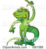 Vector Iguana Clipart by Zooco