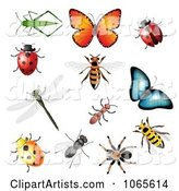 Vector Insects Clipart by Vectorace
