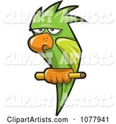 Vector Parrot Clipart by Jtoons