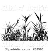 Vector Plant Clipart by Dero