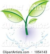 Vector Plant Clipart by Vectorace