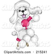 Vector Poodle Clipart by BNP Design Studio