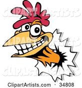 Vector Rooster Clipart by Dennis Holmes Designs