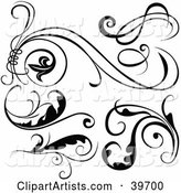 Vector Scroll Clipart by Dero