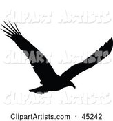 Vector Silhouetted Bird Clipart by JR