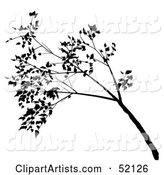 Vector Tree Clipart by Dero