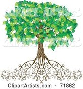 Vector Tree Clipart by Inkgraphics