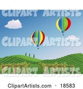 Vineyard Clipart by Rasmussen Images